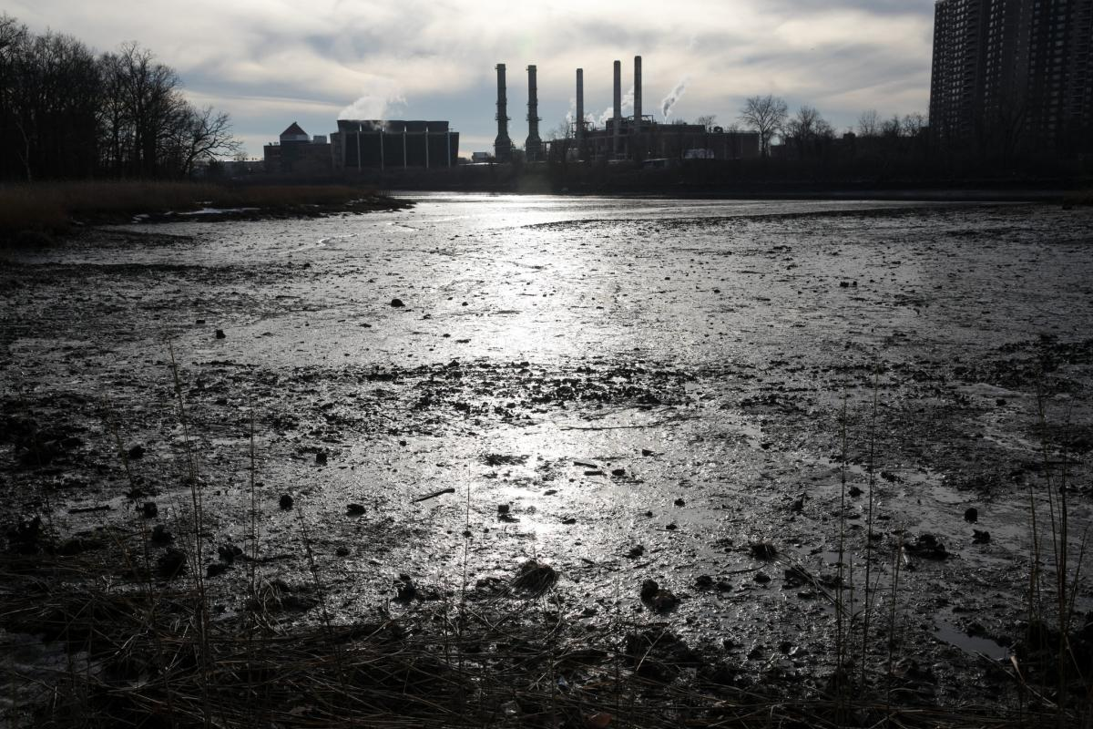 In Pelham Bay in the Bronx, an ancient salt marsh has provided a unique laboratory to study historic sea levels and perhaps see what lies ahead. Credit Todd Heisler/The New York Times