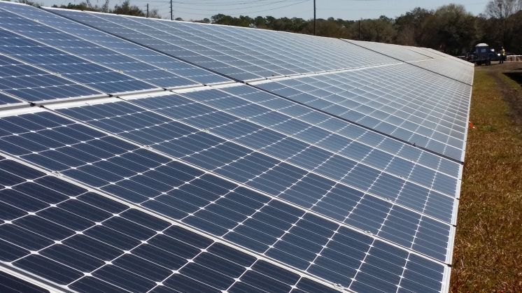 A solar array at Duke Energy Florida's 3.8 megawatt solar array in Osceola County, near St. Cloud. [Times files]